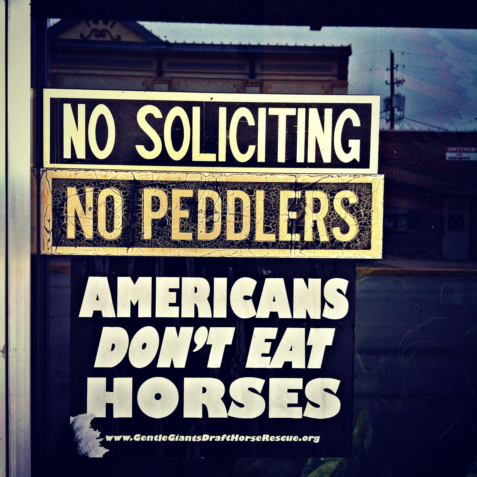 They don't eat horses, do they?