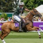 London summer family fun: Polo in the Park