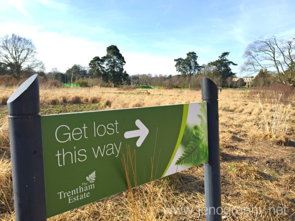 Get lost in Trentham Gardens on Jenography
