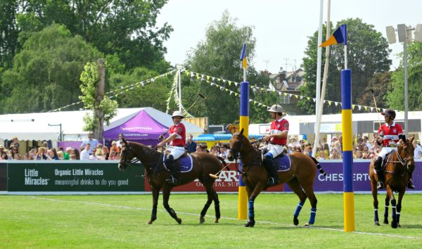 Polo ponies at Polo in the Park
