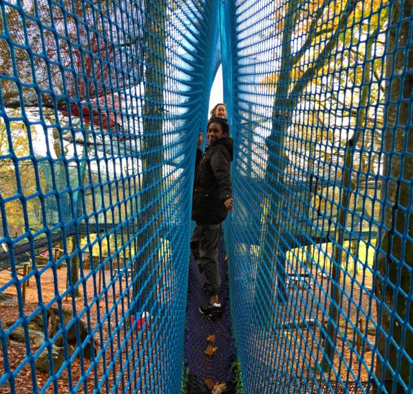 skinny nets at Treetop Nets Windermere