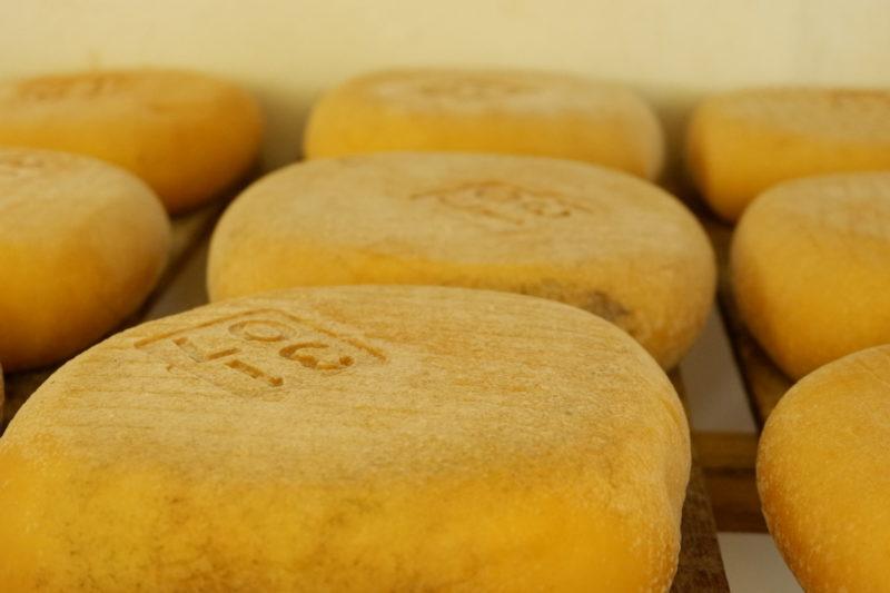 Mahon Menorcan cheese