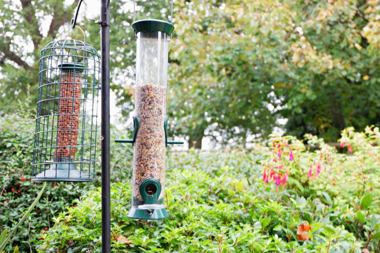 birdfeeder at Linney Cottage